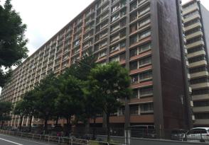 fukuri-image02